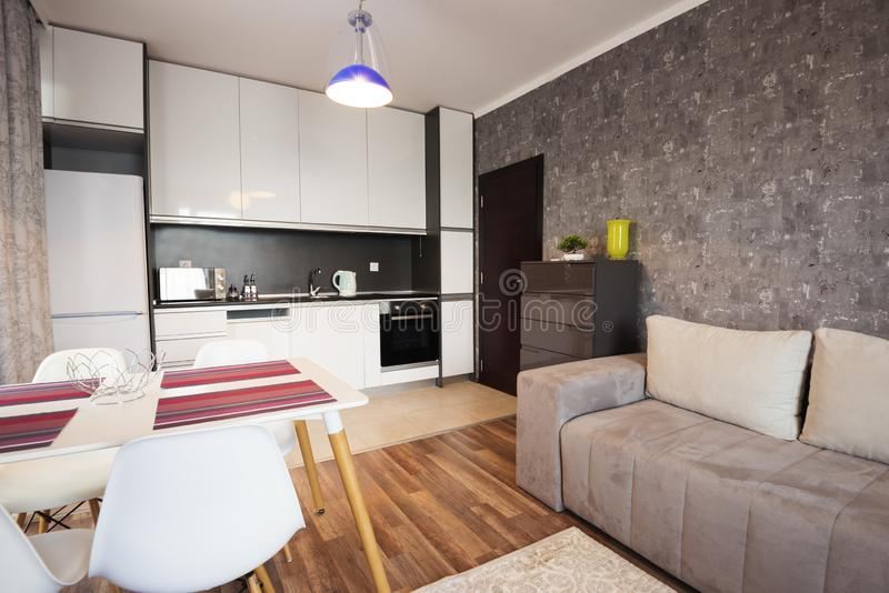 Modern helder en comfortabel woonkamer binnenlands ontwerp met bank, eettafel en keuken Grijze en witte zitslaapkamer stock foto's