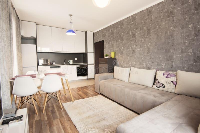 Modern helder en comfortabel woonkamer binnenlands ontwerp met bank, eettafel en keuken Grijze en witte zitslaapkamer stock afbeeldingen