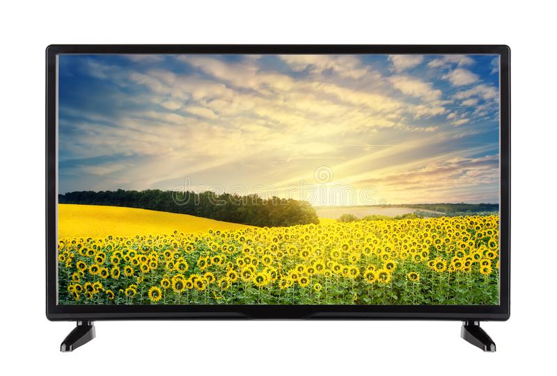 Modern high-definition TV with landscape with sunflowers on the. Screen. Isolated on white royalty free stock photography
