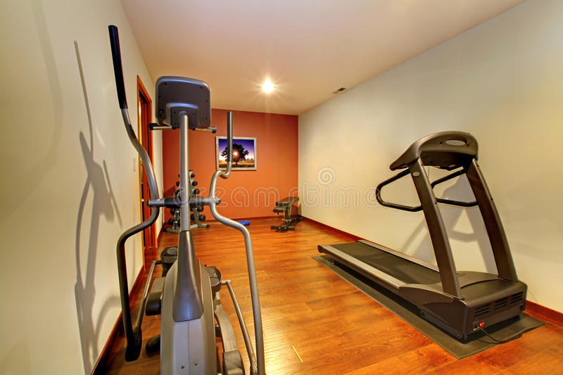 Download Modern Home Gym In The Basement. Stock Photo - Image: 23634220
