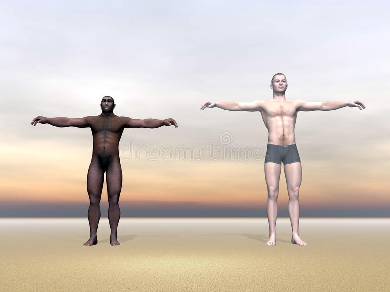 Download Modern Human And Erectus - 3D Render Royalty Free Stock Photography - Image: 32512247