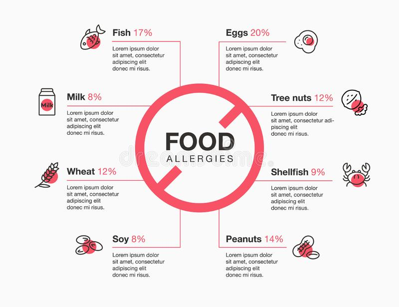 Modern infographic template for food allergies with line icons. Isolated on light background vector illustration