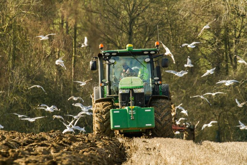 Modern John Deere tractor pulling a plough followed by gulls. Green modern John Deere tractor ploughing a field with plough working field followed by gulls royalty free stock image