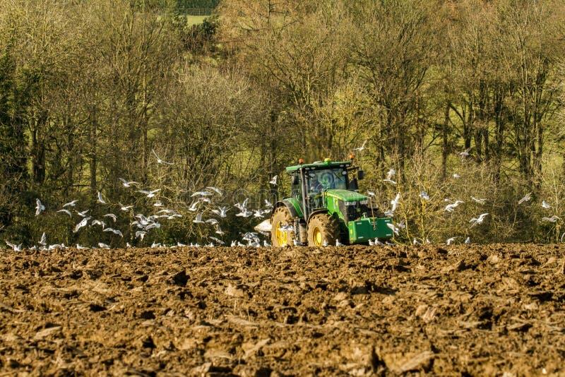 Modern John Deere tractor pulling a plough followed by gulls. Green modern John Deere tractor ploughing a field with plough working field followed by gulls stock photo