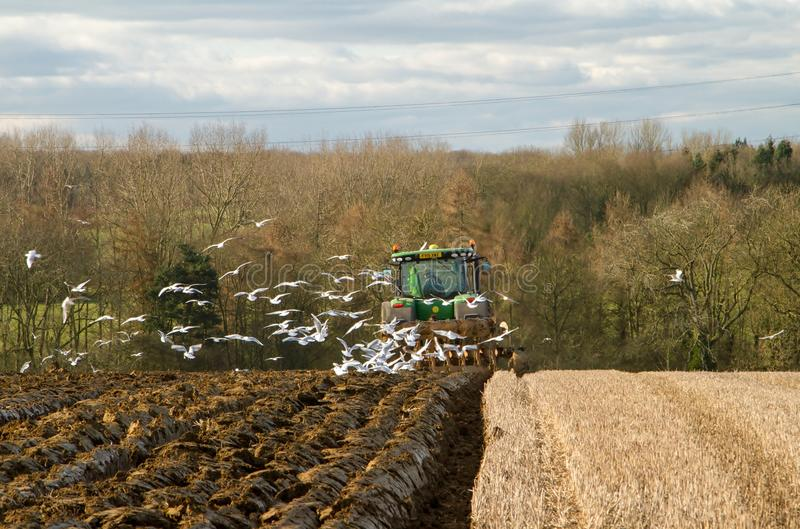 Modern John Deere tractor pulling a plough followed by gulls. Green modern John Deere tractor ploughing a field with plough working field followed by gulls royalty free stock photo