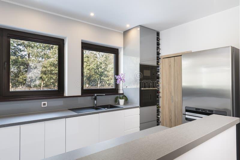 Modern kökinre med rostfritt stålanordningar fotografering för bildbyråer