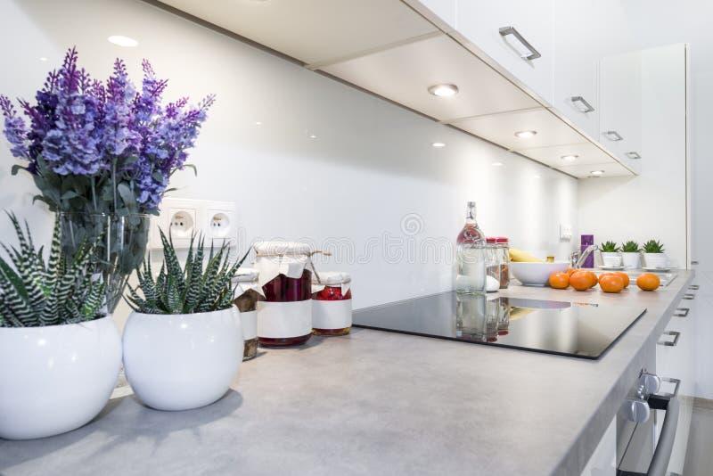Modern keuken binnenlands ontwerp royalty-vrije stock afbeelding