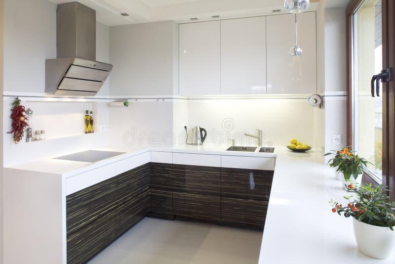 Download Modern kitchen stock image. Image of fitted, designer - 12440467