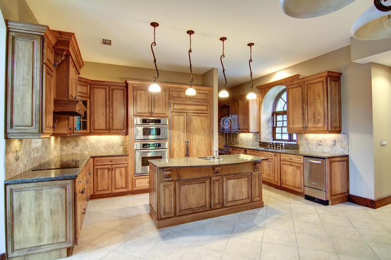 Modern kitchen. With wood cabinets stock images