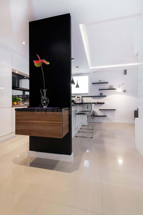 Modern korridor i lyxig lägenhet royaltyfria foton