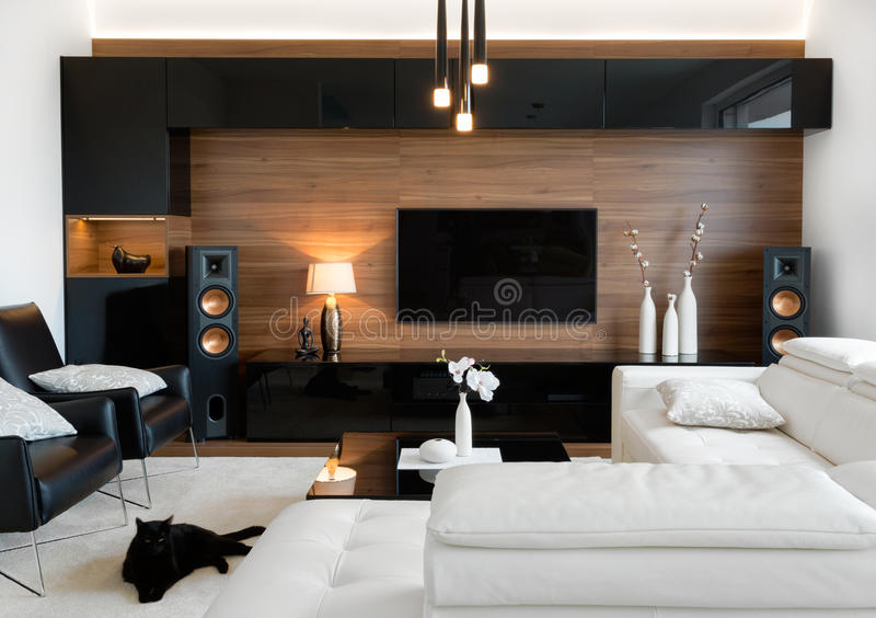 Download Modern Living Room With Stereo Speakers Stock Photo   Image Of  High, Modern: