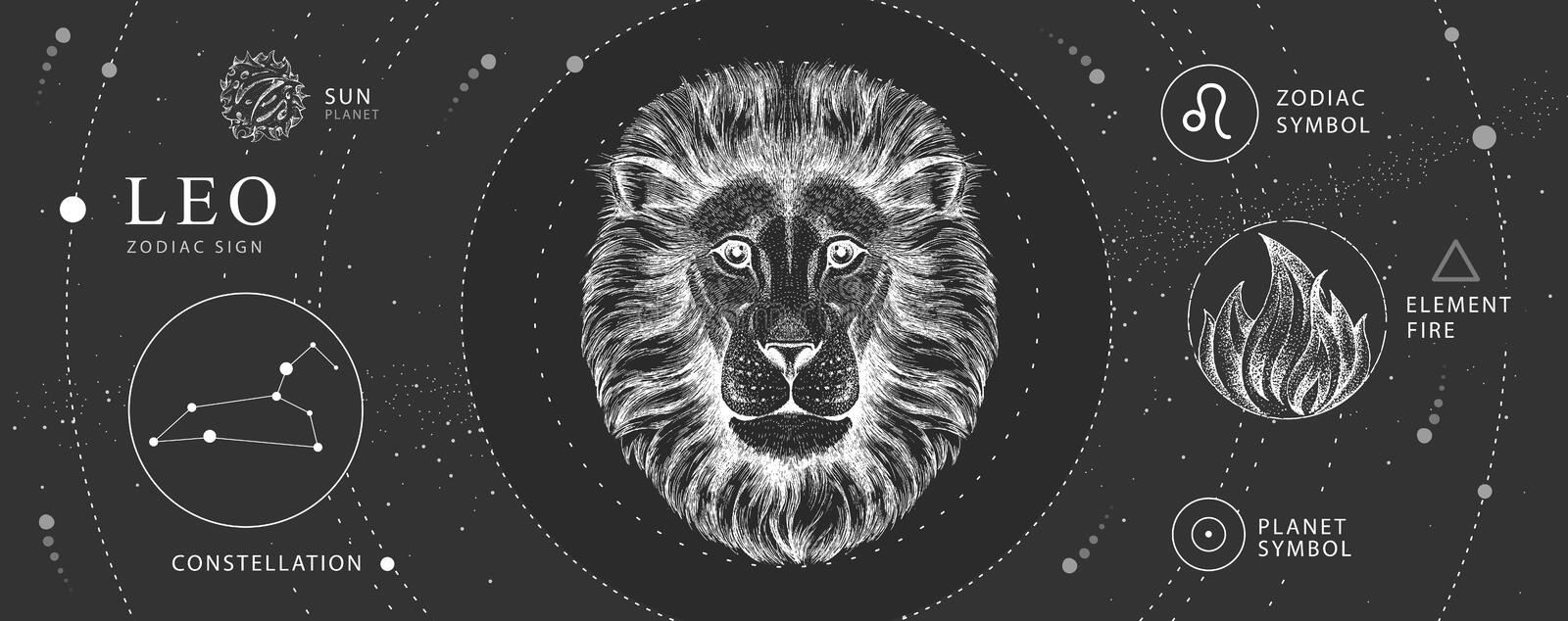 Lion Head Drawing Stock Illustrations 6 032 Lion Head Drawing Stock Illustrations Vectors Clipart Dreamstime Can find photos and the realistic lion face tattoo on arm. dreamstime com