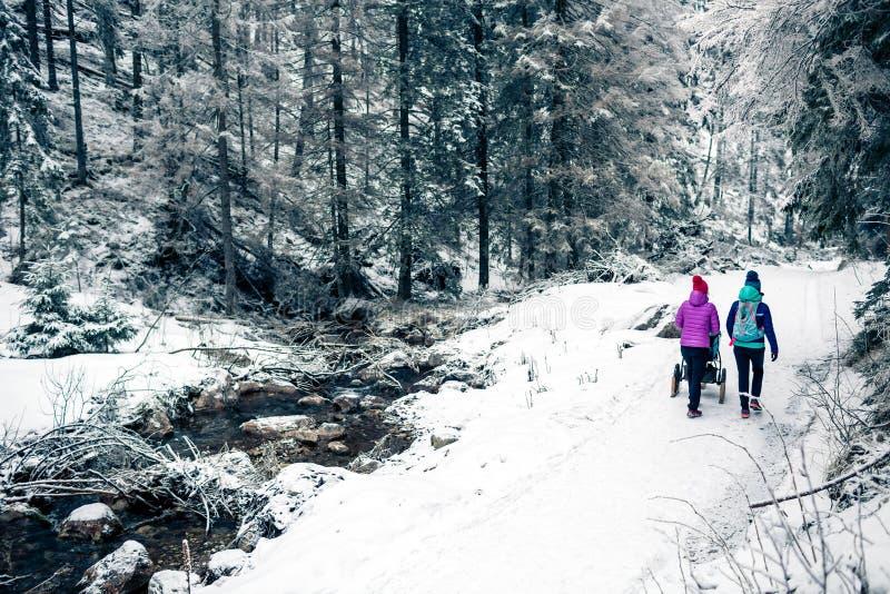 Modern med behandla som ett barn sittvagnen som tycker om moderskap i vinterskog arkivbild