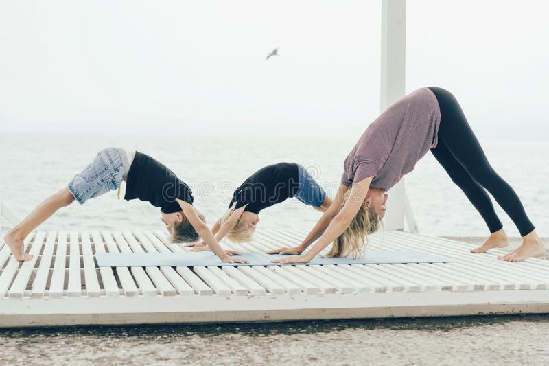 Modern med två söner i en yoga poserar hundframsidan ner royaltyfri foto