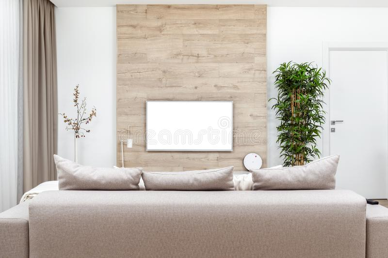 Modern minimalistic luxury apartment with couch, pillows and blank flat-screen lcd TV on the wooden wall, vase and plant. Modern minimalistic luxury apartment royalty free stock photo