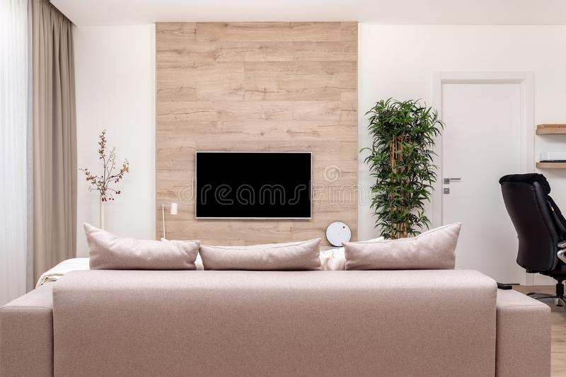 Modern minimalistic luxury apartment with couch and pillows and flat-screen lcd TV on the wooden wall, vase and plant. Modern minimalistic luxury apartment with stock photo