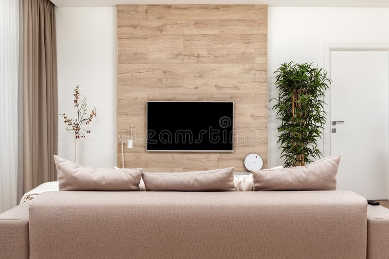 Modern minimalistic luxury apartment with couch and pillows and flat-screen lcd TV on the wooden wall, vase and plant. Modern minimalistic luxury apartment with stock images