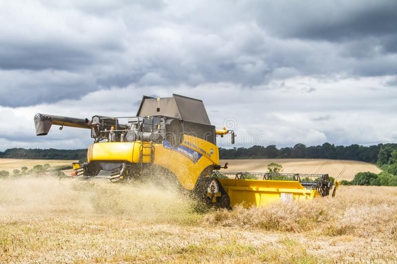 Modern new holland combine harvester cutting crops. Modern new holland combine harvester emptying crops corn wheat barley oilseed into trailer trailor working royalty free stock photos