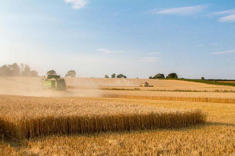 Modern New Holland combine harvester cutting crops. Two Modern combine harvester cutting crops oilseed working aenglish field corn wheat barley emptying load stock photography