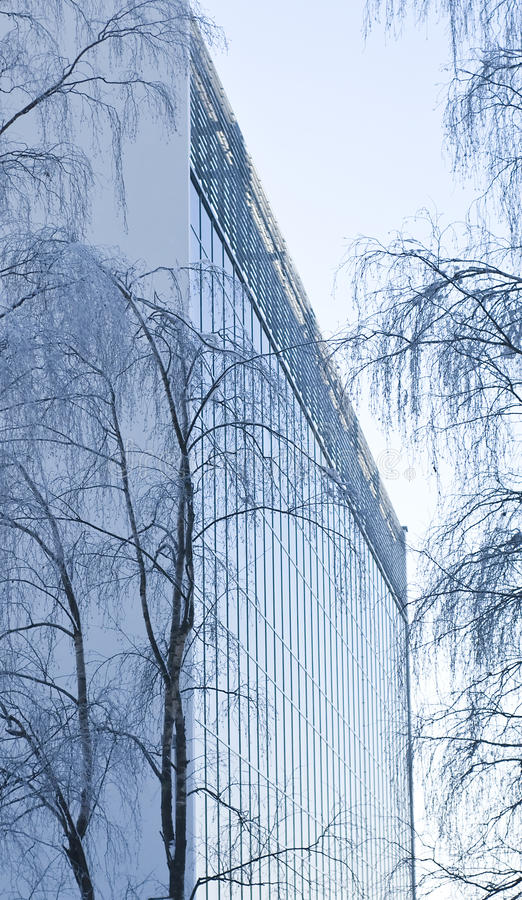 Modern Office Building In Between Trees stock images