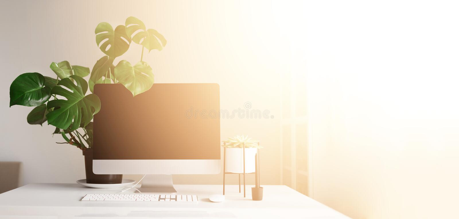 Modern office desk table. Desktop computer, white lamp, graphics tablet, keyboard, mouse, pen and succulent plant. Copy space. royalty free stock image