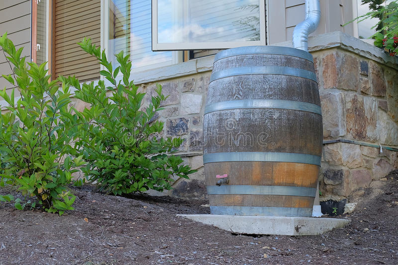 Modern Rain Barrel. A modern, wooden rain barrel is used for water conservation and makes an attractive landscaping feature royalty free stock photos