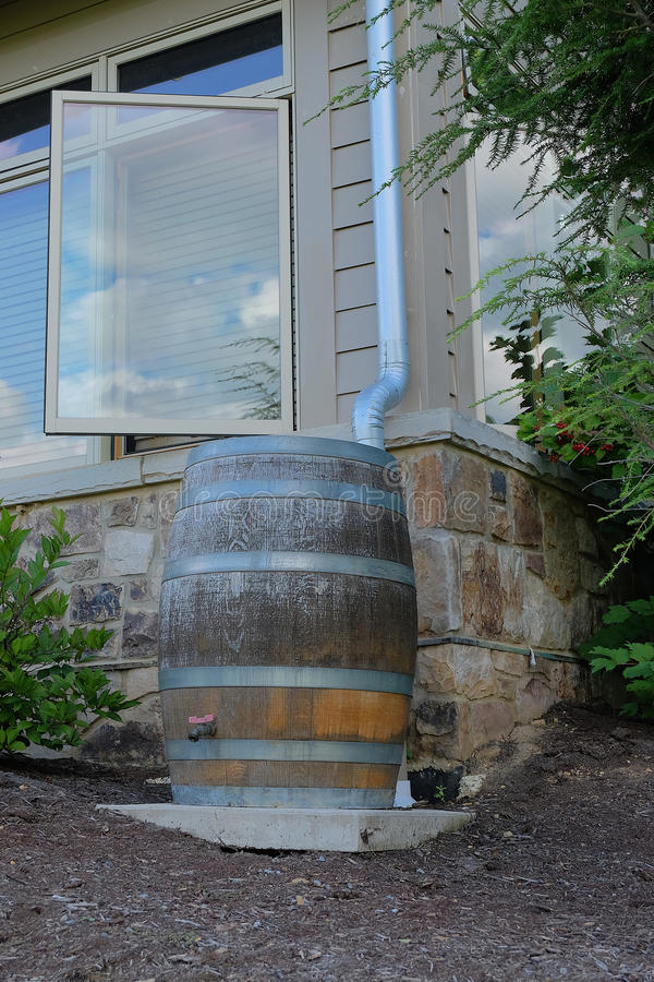 Modern Rain Barrel. A modern, wooden rain barrel is used for water conservation and makes an attractive landscaping feature stock photo
