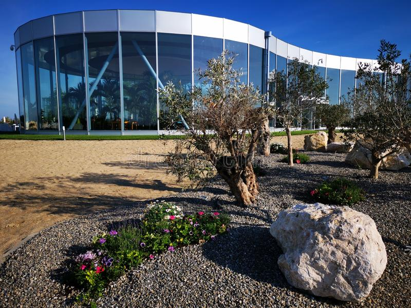 Modern resort with olive trees. And the sandy beach - flowers and stone decorative royalty free stock photo