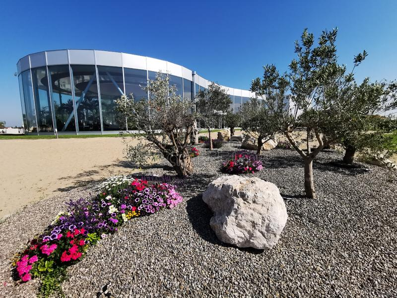 Modern resort spa and flowers garden colored. Among olive trees - gardening among olive groves royalty free stock image
