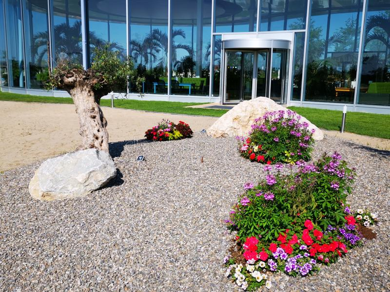 Modern resort with olive trees and flowers. Modern resort tropical with olive trees and flowers colorful in gravel stock photos