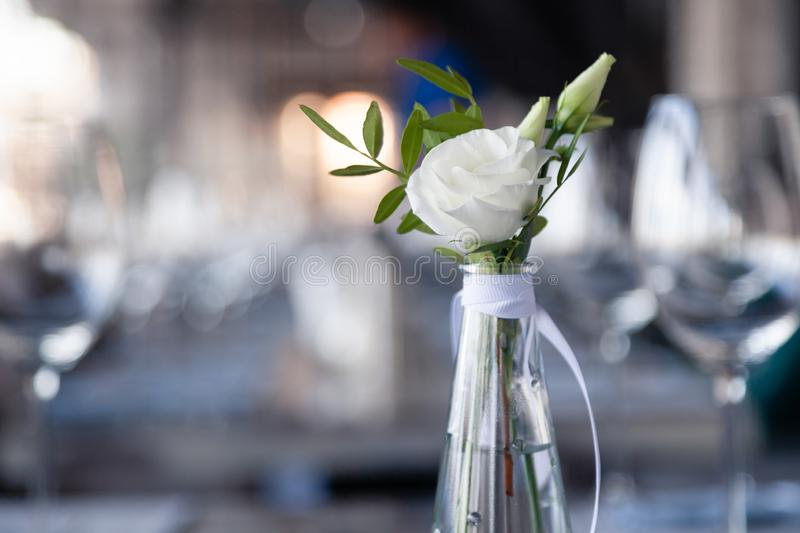 Modern restaurant setting, glass vase with bouquet flowers on table in restaurant. Wine and water glasses stand on wooden table. Transparent glass vase with stock photos