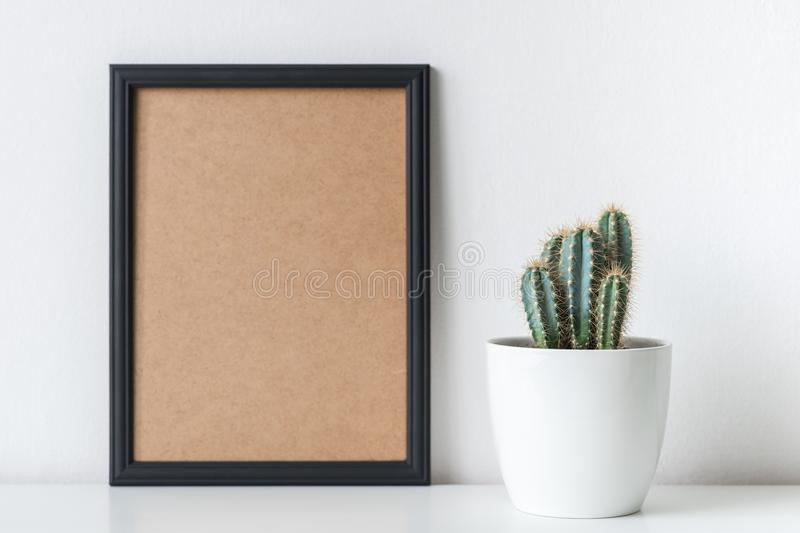 Modern room decoration. Cactus plant in white flower pot. Mock-up. royalty free stock photos