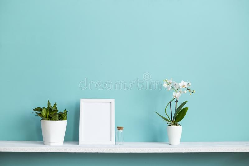 White shelf against pastel turquoise wall with potted orchid and snake plant. Modern room decoration with Picture frame mockup. White shelf against pastel stock photo