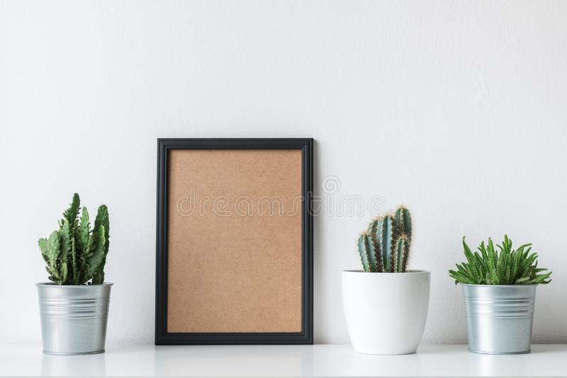 Modern room decoration. Various cactus and succulent plants. Mock-up with a black frame. royalty free stock photos