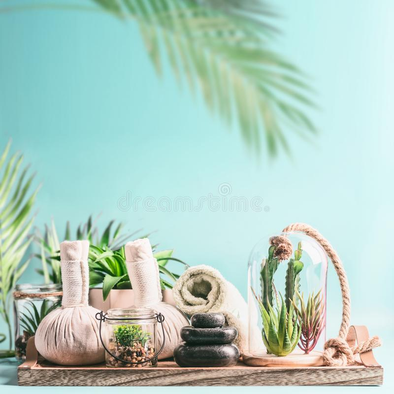 Modern spa and wellness background. Massage equipment: rolled towels, compress balls, stack of hot stones on wooden table with. Various succulent plants in royalty free stock image