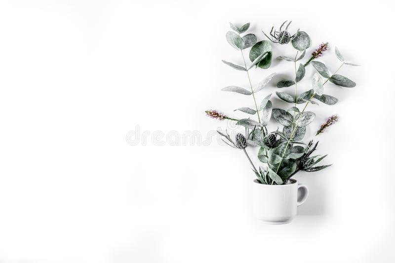 Download Modern Spring Design With Plants On White Background Top View Mo Stock Image
