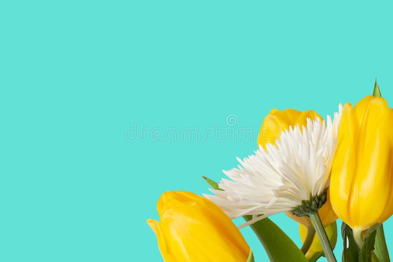 Modern spring turquoise background with flowers royalty free stock photo