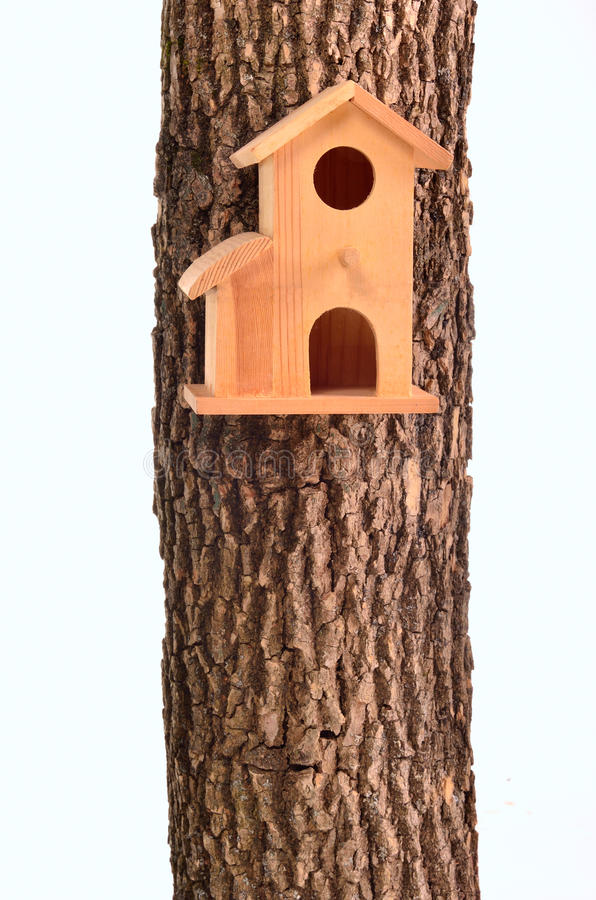 Modern starling-house on tree trunk isolated stock photography