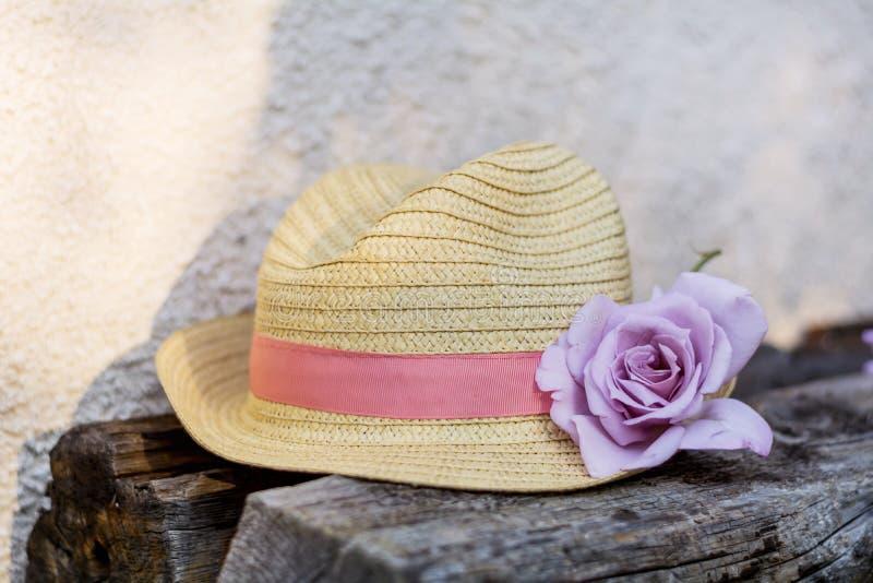 Modern sugrörhatt med rosa färgrosen arkivbild