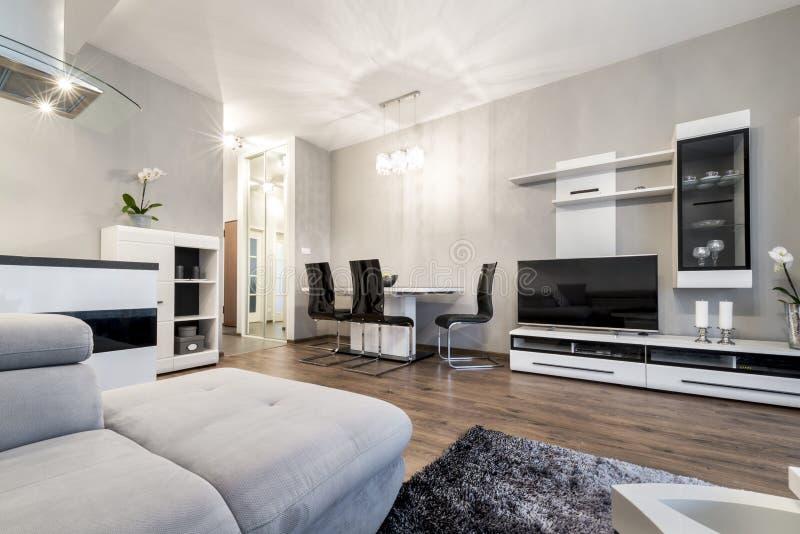 Modern vardagsrum i svartvit stil royaltyfria bilder