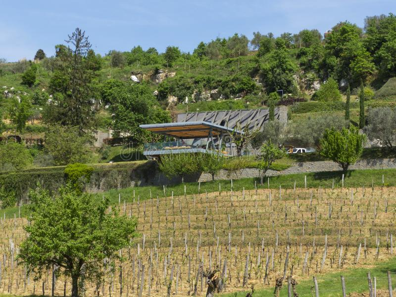 Modern vinery in Croatia - Istria. Old and new vinery in Croatia near Slovenia border Istria royalty free stock photo