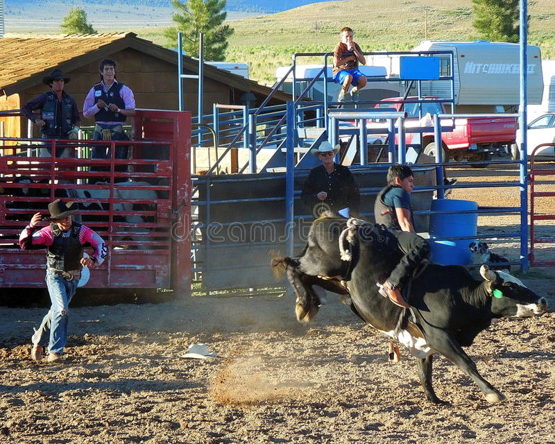 Modern Western Rodeo Event stock images