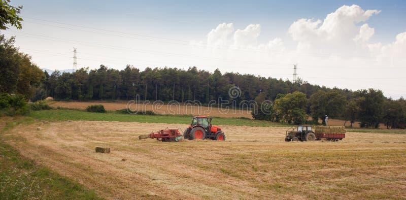 Modern wheat harvest Mediterranean agriculture stock photo