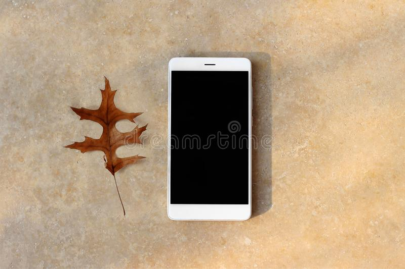 Modern white smartphone, cell phone with blank black display on table. Golden marble background with dry oak leaf royalty free stock images