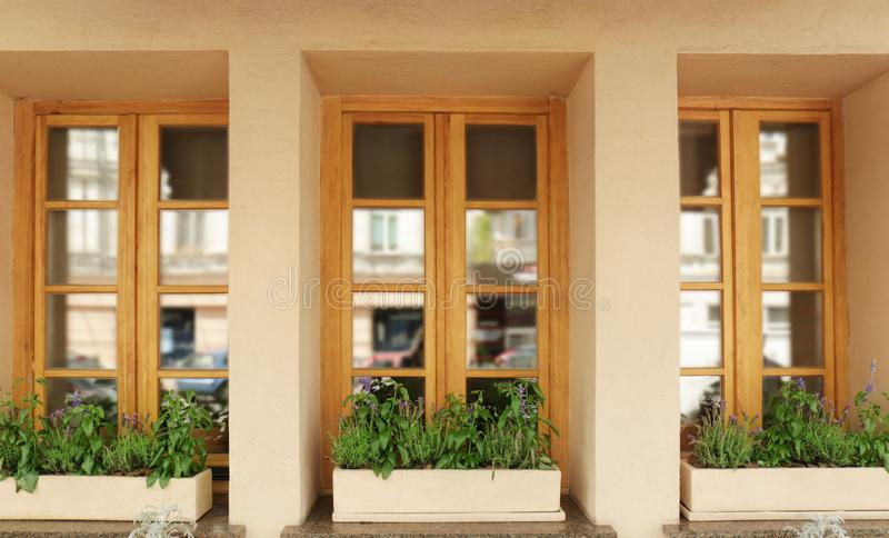 Modern wooden windows decorated royalty free stock photography