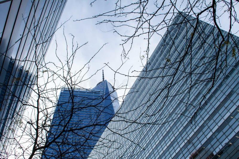 Moderna byggnader i Tribeca arkivfoton