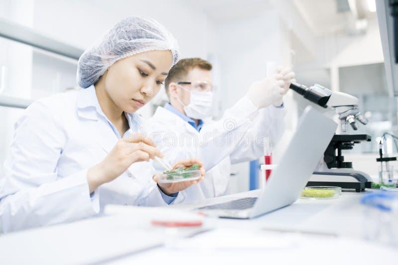 Moderna forskare som gör forskning i laboratorium royaltyfria foton