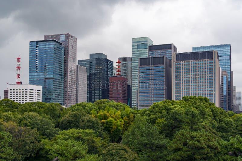 Moderna skyskrapor med frodiga gröna trädmarkiser på foregrouen fotografering för bildbyråer
