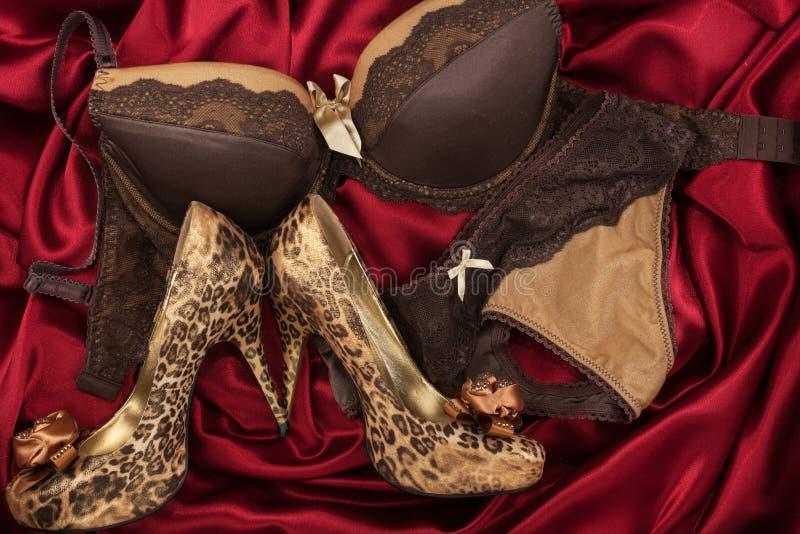 Moderna stilfulla kvinnor för modetillbehör Bruna höga häl för behå och för leopard på rött silke arkivfoton