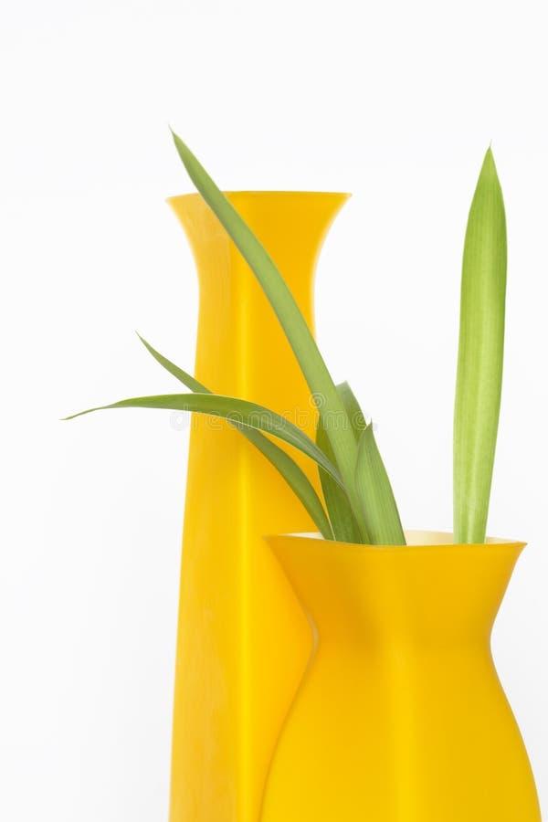 moderna vases arkivbilder